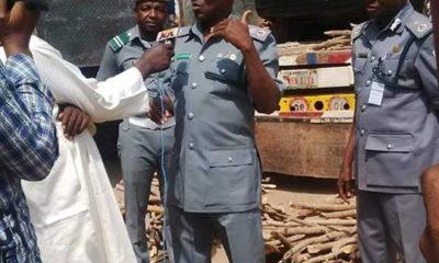 customs intercept car smuugled within bundles of firewood