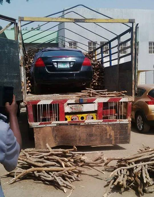 customs intercept car smuugled within bundles of firewood3