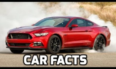 Fun Car Facts