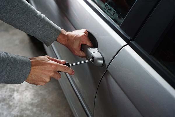 car-snatchers