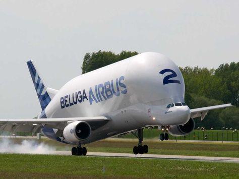 airbus-beluga