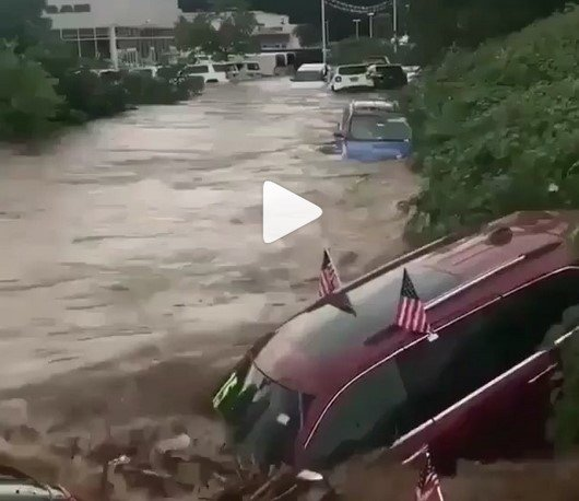 cars floating on river