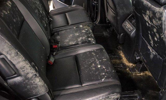 tint discoloured car seat
