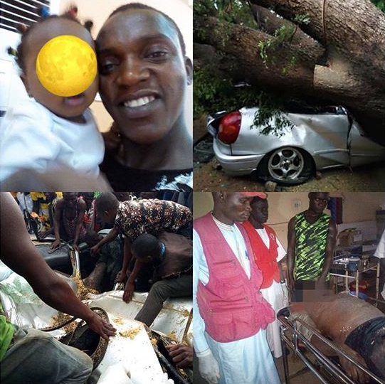 mechanic dies after tree fell on car