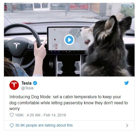 tesla dog mode tweet