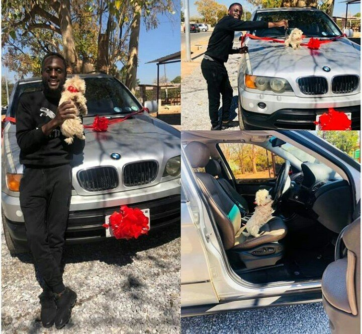 man who bought suv for his dog