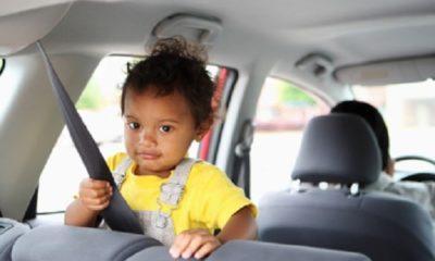 seat belt entanglement