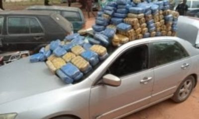 edo-ndlea-impounded-6-vehicles-carrying-n25m-worth-of-cannabis-sativa-igbo