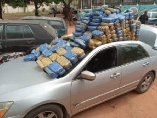 edo-ndlea-impounded-6-vehicles-carrying-n25m-worth-of-cannabis-sativa-igbo
