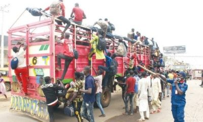 60-lagos-bound-men-from-zamfara-intercepted-in-truck-conveying-cows