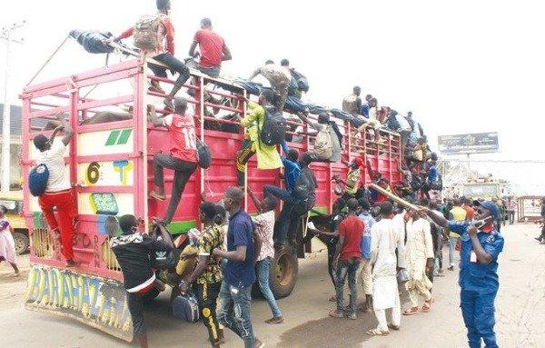 60-lagos-bound-men-from-zamfara-intercepted-in-truck-conveying-cows
