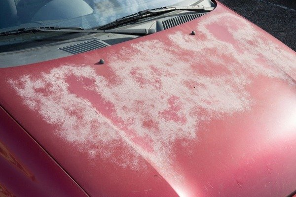Things That Can Damage Your Car's Paint autojosh