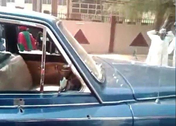 Emir of Kano Jaguar XJ autojosh