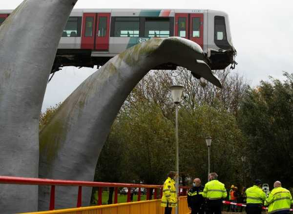 Whale Statue Saved Crashed Train From Falling 30-Feet To The Ground - autojosh