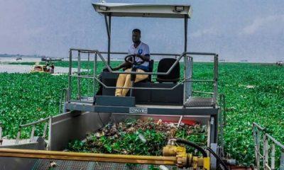 LASWA Intensifies Effort On Water Hyacinth Clearing - autojosh