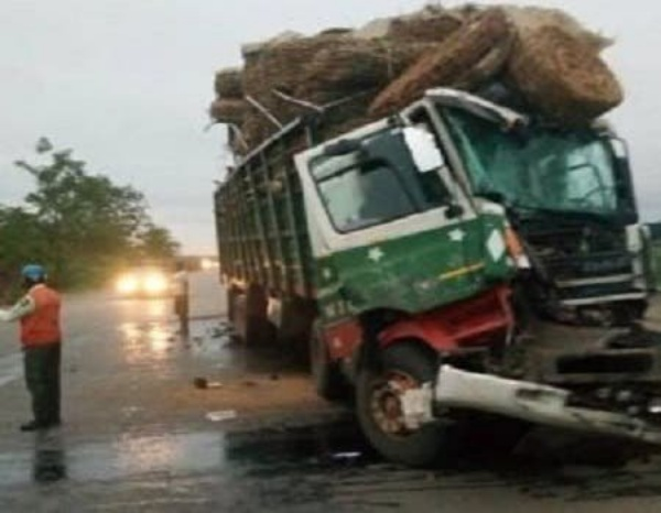 Trailer Loaded With Cows And 55 People Somersaults, Kills 22, Injures 33 In Niger - autojosh