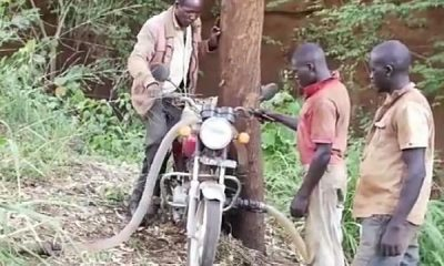 Ugandan Biker Repurposed His Motorcycle To Pump Water Into His 2-acre Tomato Farm - autojosh