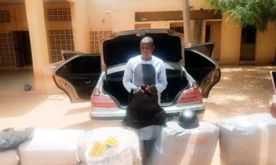 Trans-border Trafficker Arrested In Kebbi After NDLEA Found 280kg Drugs In Car Boot - autojosh