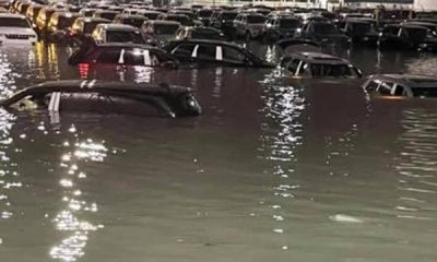 Flooding From Heavy Downpour Submerged Hundreds Of New Vehicles At Jeep's Detroit Shipping Yard - autojosh