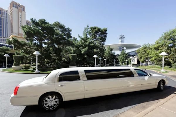 Owner Of A Limousine Service And Wife Turns Chauffeur Due To Driver Shortage, Loses $3k-a-week - autojosh