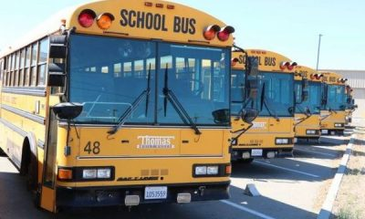Schools In U.S Are Paying Parents $250/Month To Drive Their Kids Due To Bus Driver Shortage - autojosh